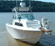 1990 Chris Craft 254 Seahawk